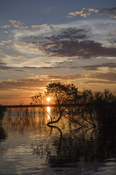 """Sunrise at Webster Lake, KS"" by Carol Campbell"
